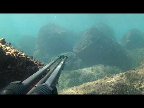 Spearfishing with Cressi Comanche 110 cm