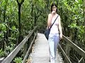 Cape Tribulation - Organic Fruit Farm, Travel Video
