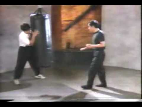 Bruce Lee's Fighting Method Basic Training & Self Defense Techniques 4 clip0 Image 1