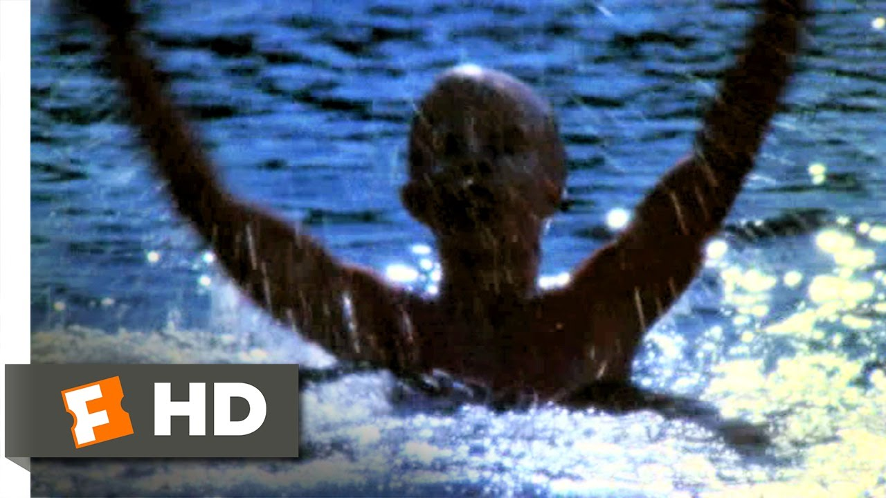 Friday the 13th (5/10) Movie CLIP - His Name Was Jason ...