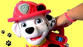 Funtoys Paw Patrol Treat Time Marshall by VTech Learn Colors & Learn Numbers with Marshall Baby Toy