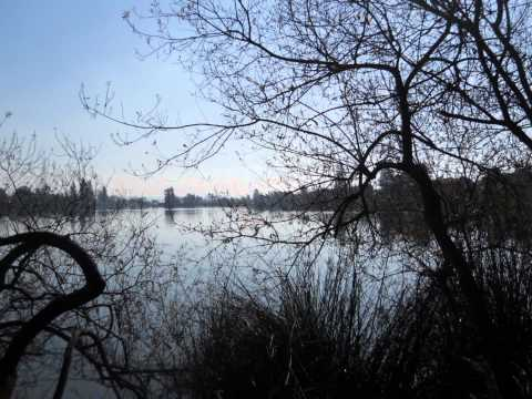 Pinto lake county park.wmv