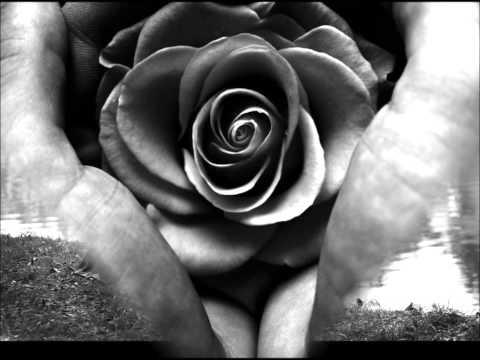 Ännu doftar kärlek ~Marie Fredriksson