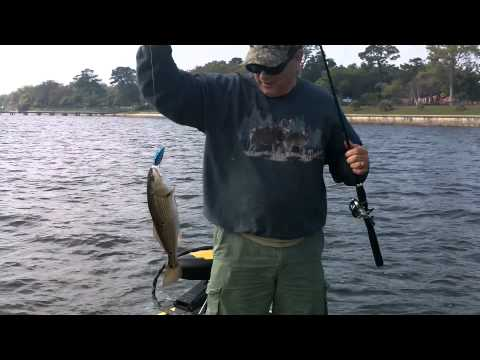 Redfishing the St. Johns River