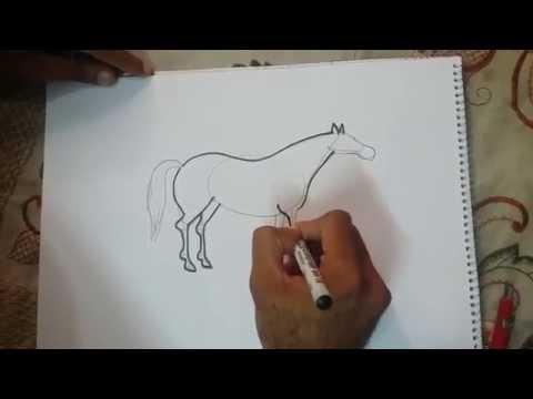 تعليم الرسم المبسط - كيف ترسم حصان