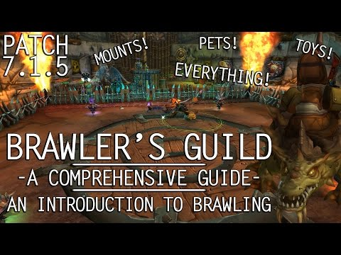 BRAWLER'S GUILD A COMPREHENSIVE INTRODUCTION TO BRAWLING 7.1.5