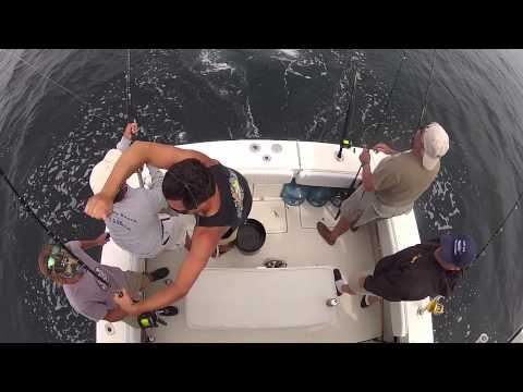 New Jersey Tuna Fishing 3