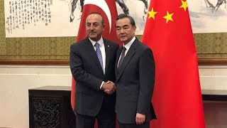 Chinese and Turkish foreign ministers discuss potential fields of cooperation
