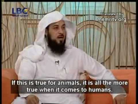Does Islam allow men to beat there wives Explained by Muhammad al arifi