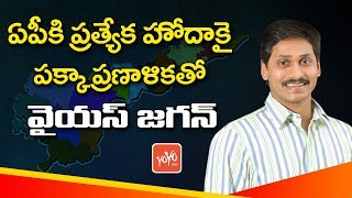 YS Jagan's Political Strategy For AP Special Status | TDP Vs YCP | AP News