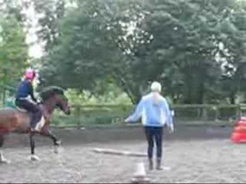 Riding School. Jumping.
