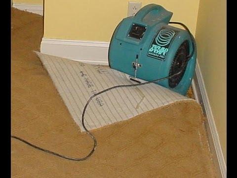 flooded wet carpet water damage flooded carpet drying youtube