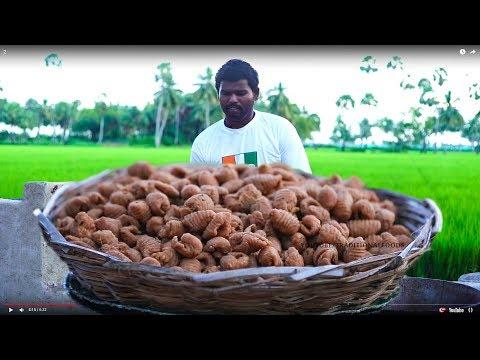 బెల్లం గవ్వలు తయారు చేయు విధానము | Andhra Sweet Gavvalu Recipe ఆంధ్ర గవ్వలు