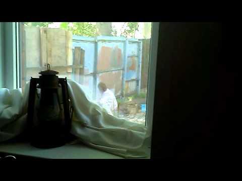 pisayushie-u-vseh-na-vidu-video