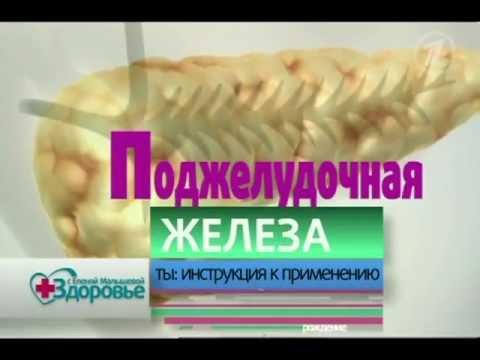 Видео как проверить поджелудочную железу