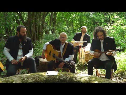 M5 TV – Erdei muzsika - interjú a Misztrál együttes zenészével – 2020/23. adás – 2020.07.04.