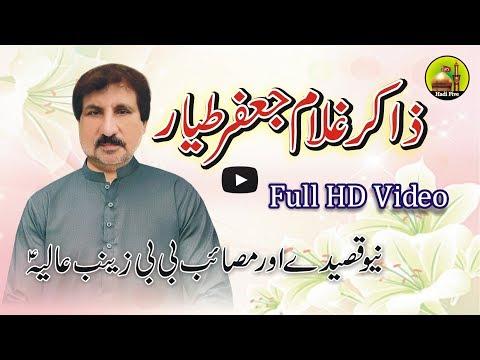 Zakir Malik Ghulam Jafar Tayyar New Qasedy Masaib BB Zainab E Alia A s