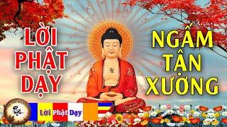 Nghe Lời Phật Dạy NGẤM TẬN XƯƠNG để thật sự THÀNH CÔNG GIÀU CÓ | Phật Pháp Nhiệm Màu