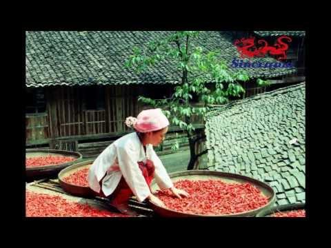 Les rizières en terrasses de Longsheng (Longji terraced fields)