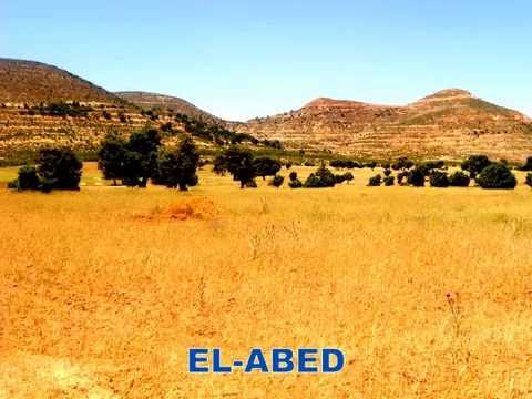 PANORAMA PAYSAGE REGION  EL ABED  (ALGERIE)  ET SIDI BOUBEKER (MAROC)  06 JUIN 2014