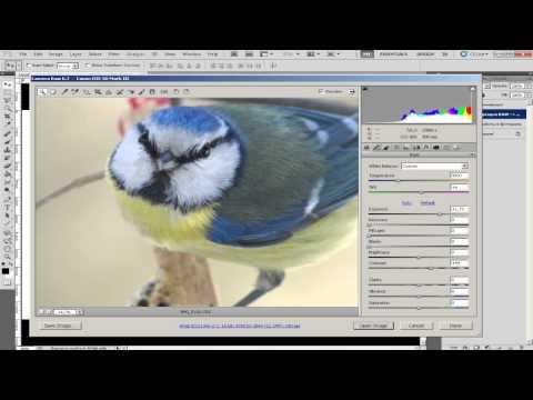 Как из raw сделать jpeg в фотошопе - Корпоративный портал