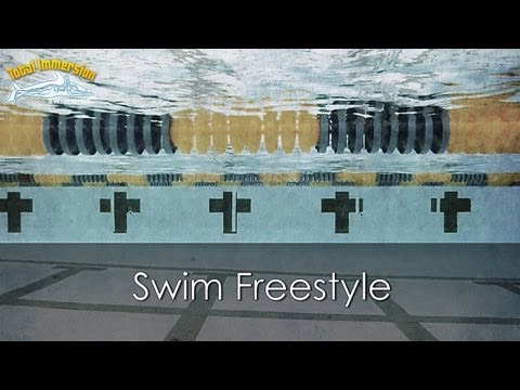 Copy Of Total Immersion Workshop - More Efficient Swimming video