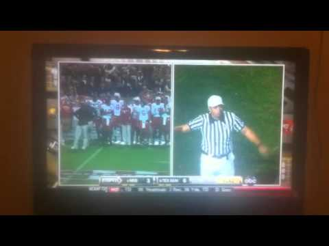 Nebraska coach Pelini insults ref