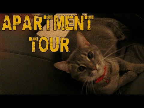 New Apartment Tour & Updated Setup! (11-26-13)