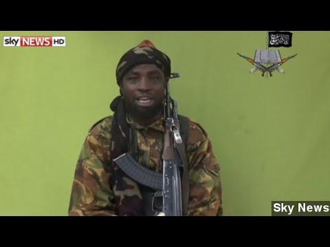 Boko Haram Kidnaps Wife Of Senior Cameroon Politician