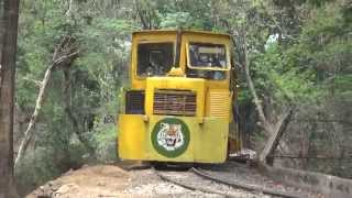 Sanjay Gandhi National Park Toy Train Coverage at Borivali, Mumbai