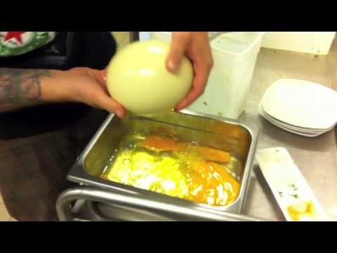 How to open an Ostrich Egg