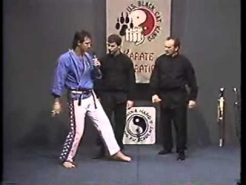 Entertainment - China Hand Kung Fu - Pat & Mark TV Tai Chi/Hsing Yi Image 1