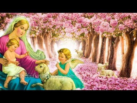 LOS 12 REGALOS DE MARIA (1 de 2, Padre Moisés Lárraga)
