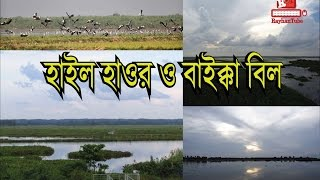 Beautiful of Hail Haor and Baikka Beel - 1