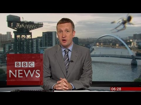 Spider photobombs news bulletin