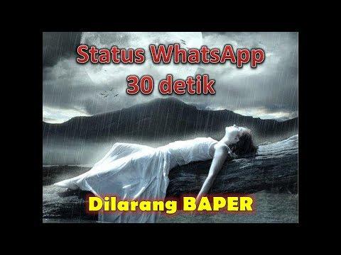 Status WA / WhatsApp 30 Detik - Sendiri Bukanlah Alasan Untuk