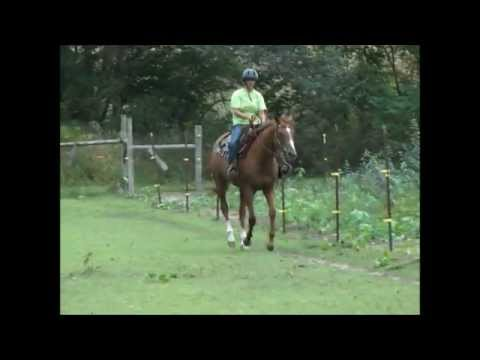 Chris Ledoux - Round And Round She Goes (The Barrel Rac