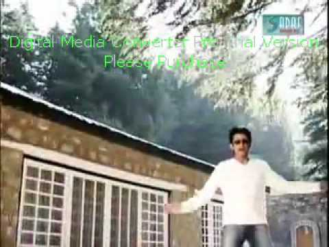 Ali Sher - Chaar Dina Da.wmv video