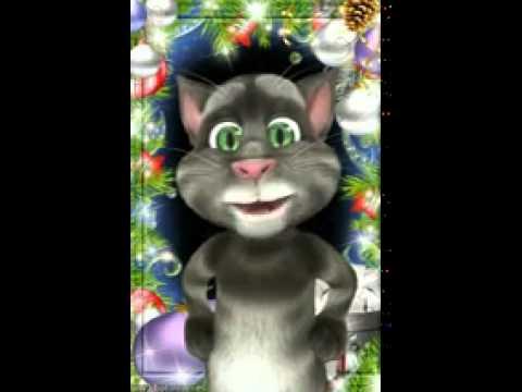 Gatto Tom Natale