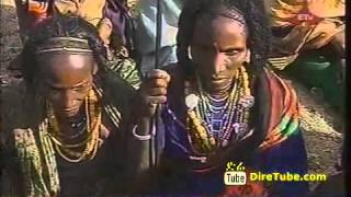 Traditional African Hair Style/Ethiopia Hair Style DireTube.com
