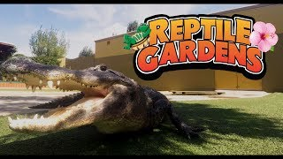 Reptile Gardens | World's Largest Reptile Collection
