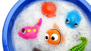 Learn Sea Animal and Wild Zoo Animals Names Education Video Animal Toys For Kids