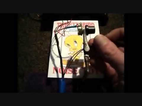 TWEETY BIRD CB RADIO NOISE TOY ( SOUND SAMPLES ) - MARCH 7, 2013