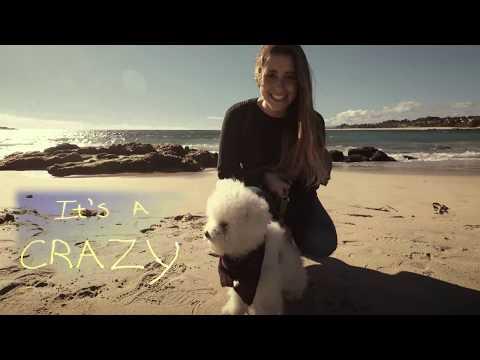 Crazy Beautiful Life (Lyrics Video) Why Him Soundtrack