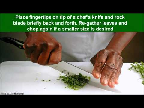 Chopping Fresh Herbs