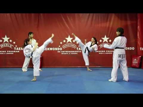WORLD TAEKWONDO TRAINING PROGRAM- DVD NO.1 Image 1