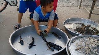 Đồ chơi trẻ em bé pin đi chợ mua cá ❤ PinPin TV ❤ Baby toys market fish