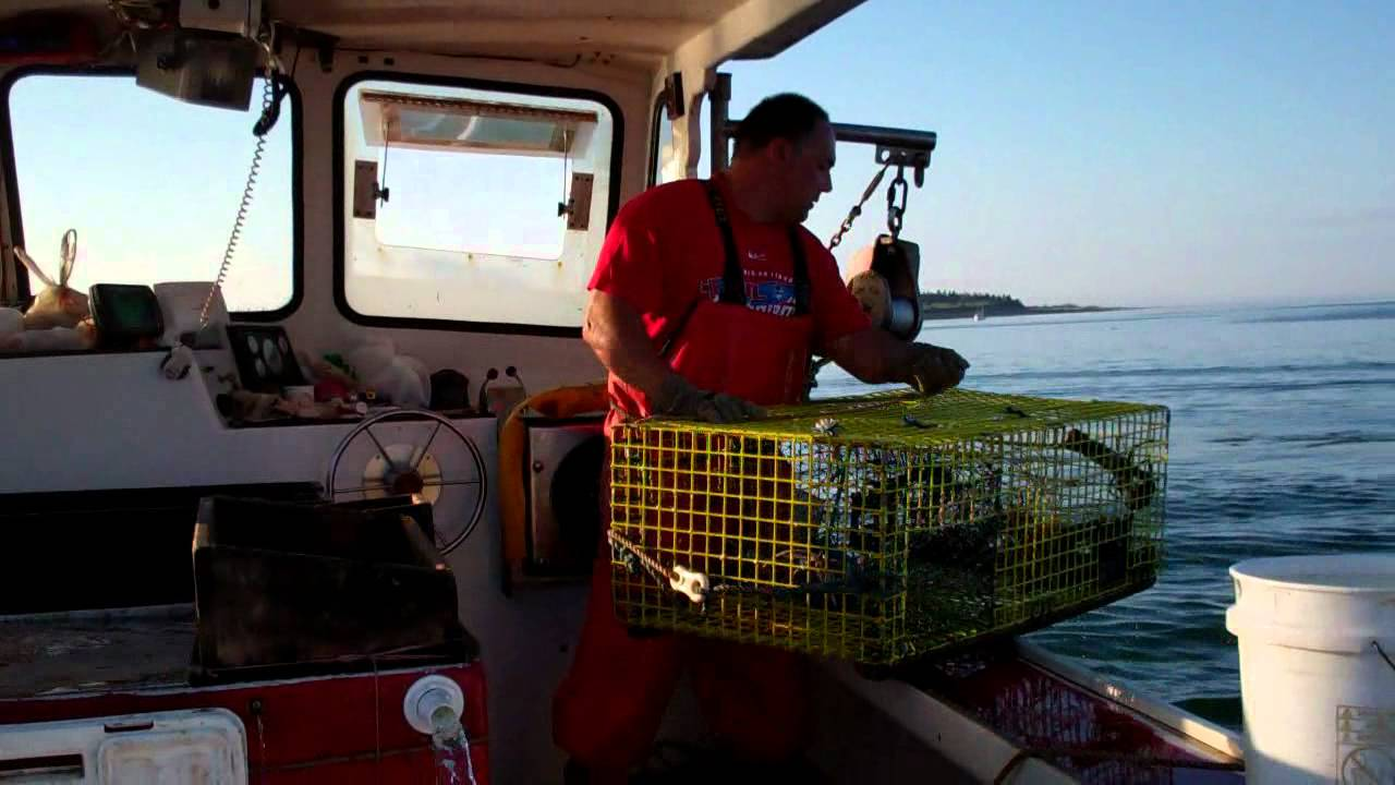 Lobster fishing in maine hd youtube for Maine out of state fishing license