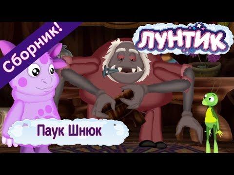 Паук Шнюк 🕷 Лунтик 🕸 Сборник мультфильмов 2018