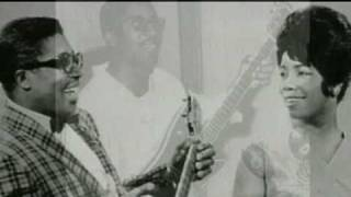 Watch Animals The Story Of Bo Diddley video